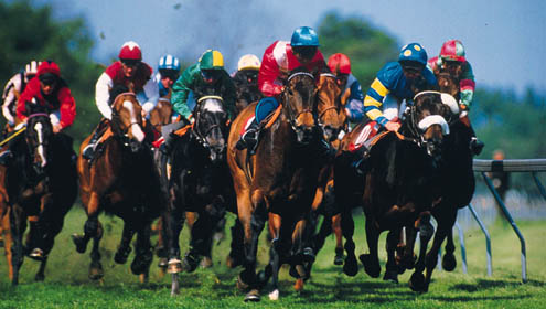 The Adelaide Cup Day